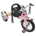 click here to buy the Schwinn Roadster trike